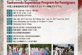 외국인 태권도 체험프로그램 홍보페이지